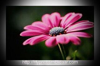 هیپنوتیزم بیدار - دکتر حریری